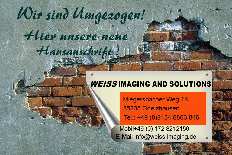 Umzug_Wall_News_Final